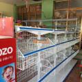 Kệ bày hàng tạp hóa tại Thanh Sơn, Phú Thọ